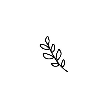 月桂樹の葉のアイコン