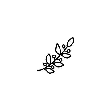 実の付いた月桂樹の葉のアイコン