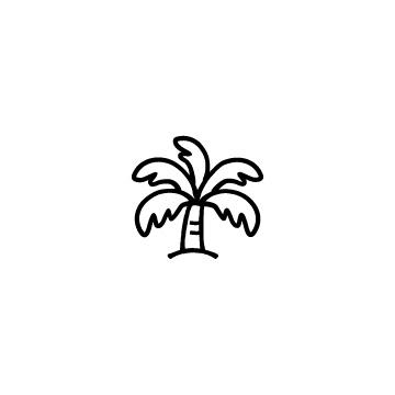 ヤシの木のアイキャッチ用画像