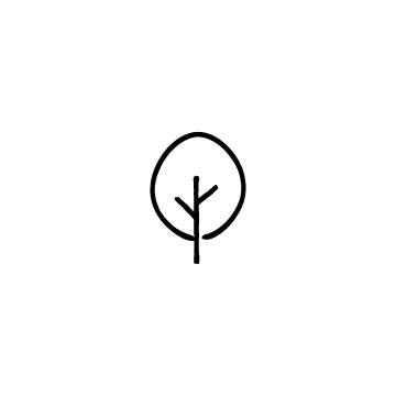 丸っぽい木のアイキャッチ用画像