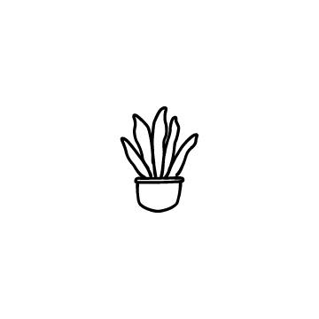 観葉植物のアイコンのアイキャッチ用画像