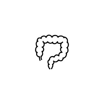 大腸のアイコン