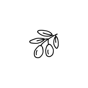 オリーブのアイコンのアイキャッチ用画像