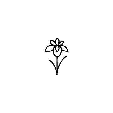 菖蒲の花のアイコンのアイキャッチ用画像
