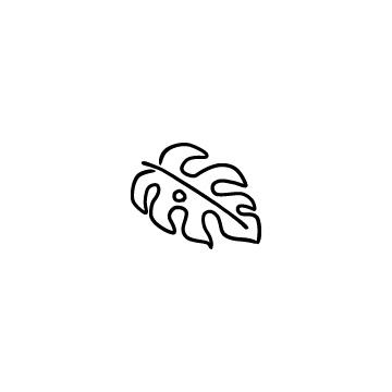 モンステラの葉のアイコンのアイキャッチ用画像