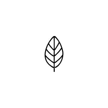 葉っぱのアイコン1