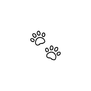動物の足あとのアイコンのアイキャッチ用画像