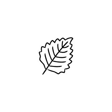 大葉・シソの葉のアイコン