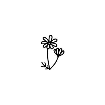 コスモスの花のアイコン2